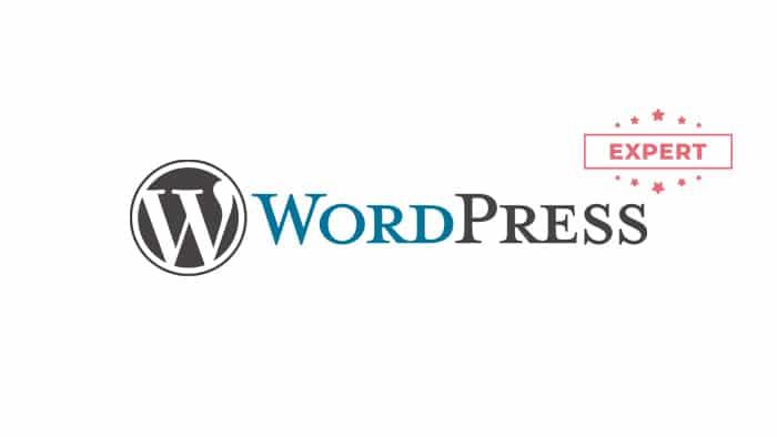 expert-wordpress-com-maker